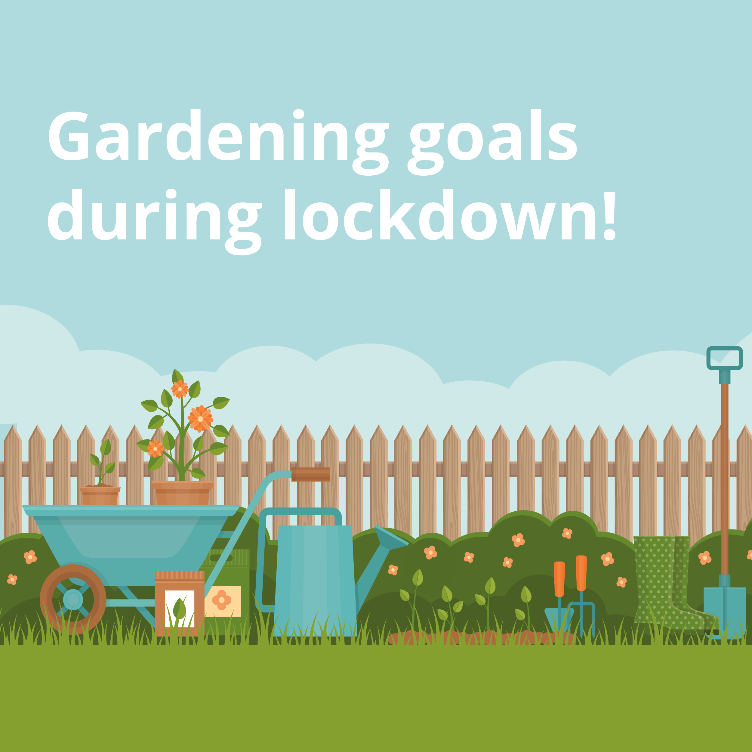 Achieving garden goals in lockdown